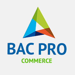 BAC PRO Commerce & Vente en alternance à Tours